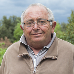 Egidio Guarino