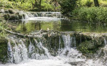 Découvrir le territoire biotois avec CASA Nature