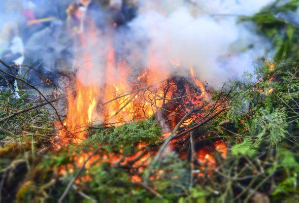 Le brûlage des végétaux est interdit