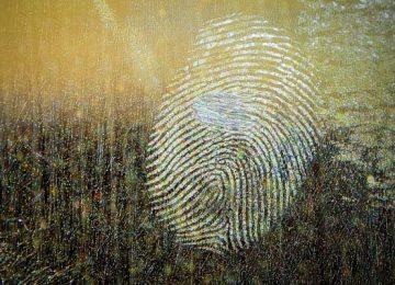 Pièces d'identité :  vers le tout biométrique
