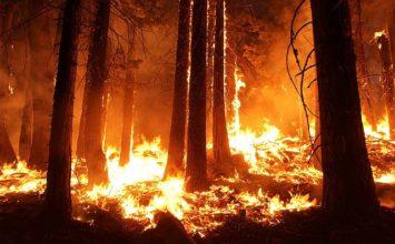 Prévention risque incendie prolongation jusqu'au 31 décembre