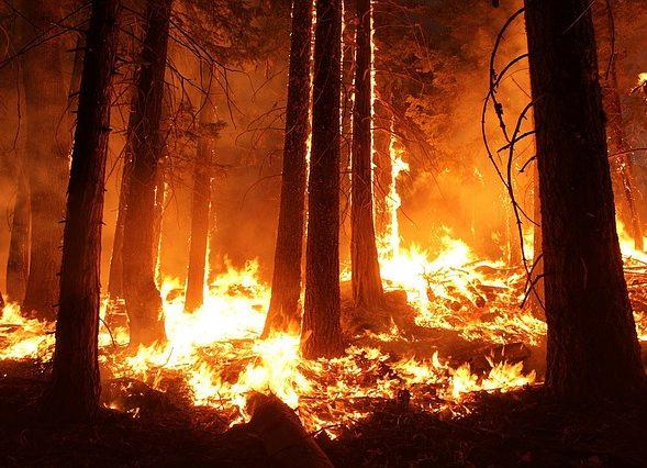 Prévention risque incendie prolongation jusqu'au 15 novembre et vigilance sécheresse