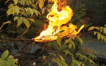 Période rouge mobile de règlementation de l'emploi du feu