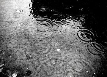 Inondations dans l'Aude : la ville de Biot se mobilise